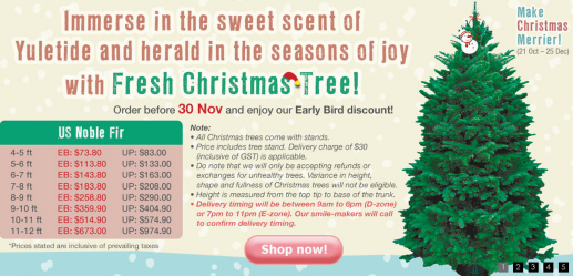 Early Bird Discounts On Christmas Trees At Far East Flora  - Christmas Tree Discounts