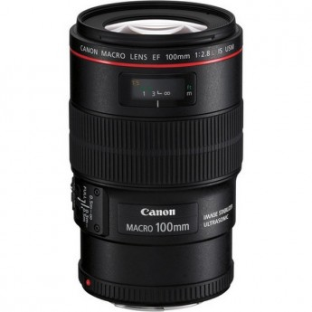 canon EF 100mm Macro IS USM lens