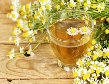 chamomile-extract