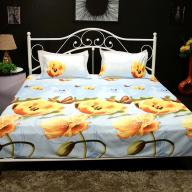 digitally-printed-3-double-bedsheet-by-valtellina-large_23c44cb5295d4ee6c308f1beef1788bd