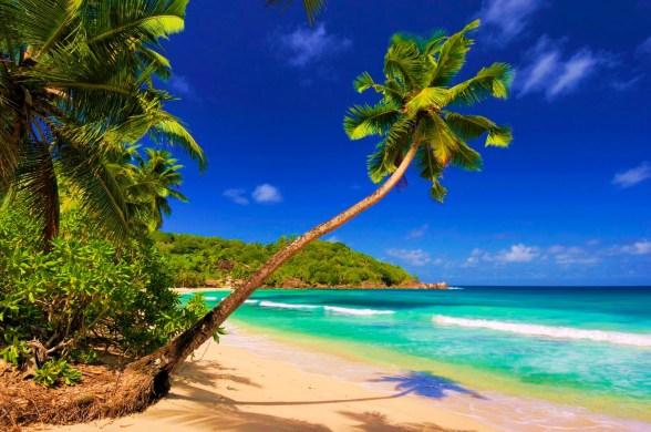 The-perfect-beach