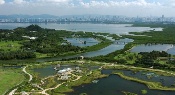 Hong-Kong-Wetland-Park