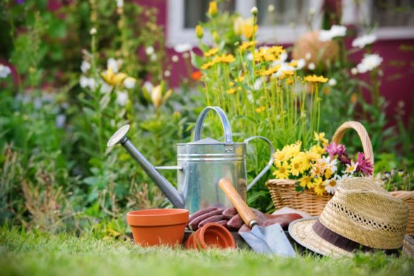 gardening-768x512