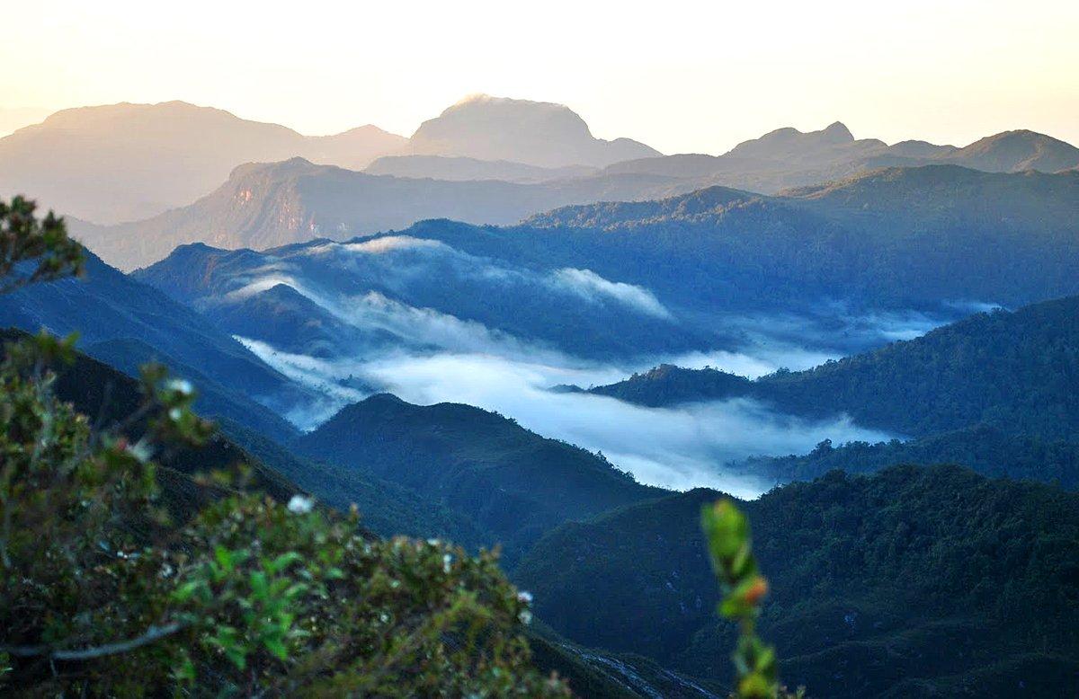 Gunung Tahan 2